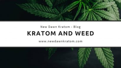 Kratom and Weed: Are They a Good Mix?